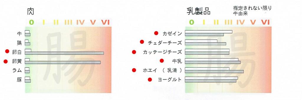 遅発性アレルギー検査 1ページ(1)