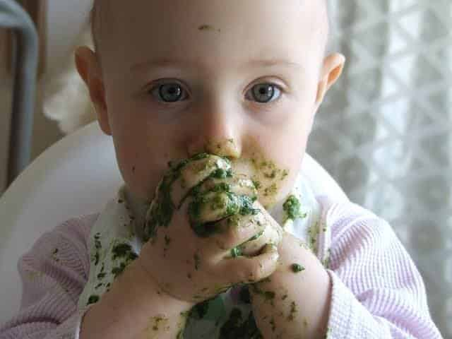 離乳食を生後5ヶ月で食べないのは 早すぎるから。WHO世界保健機関からのオススメ